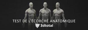 header_avis_3Dtotal_ecorche_anatomique